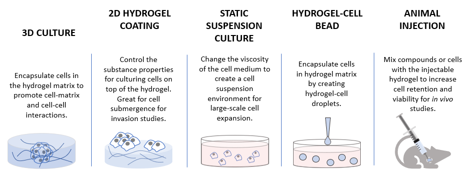 3D cell culture methods and applications